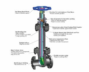 bellow sealed valve